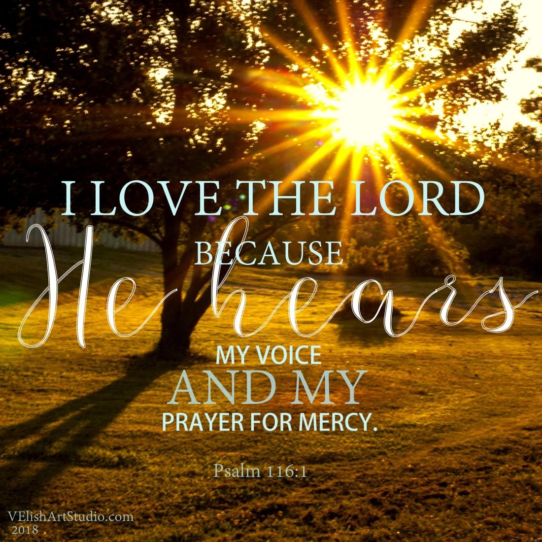 _IGP5393 Psalm 116.1 10x10