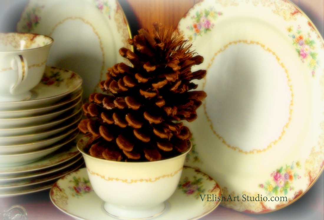 1-_IGP4226 china pinecone soften cropped